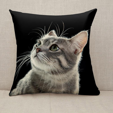 Portrait of cute beautiful cat Throw Pillow [With Inserts]