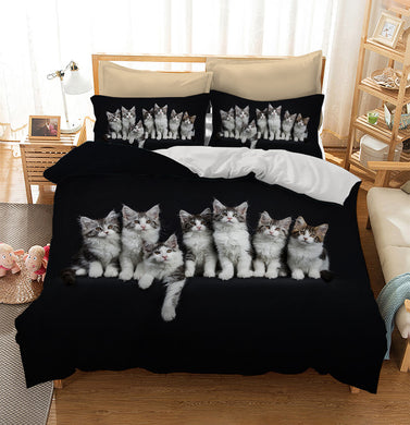 Row of seven black tabby with white Maine Coons cats Custom Printing Comforter