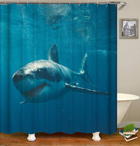 Animal Shark Shower Curtain