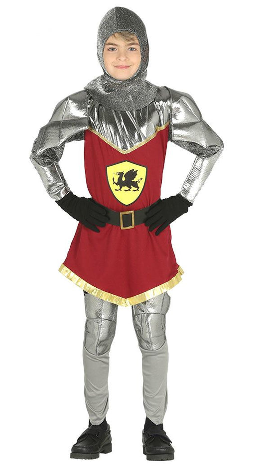 Kids Dragon Knight Costume