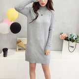Long Knitted Women Sweater Dress Female Winter Long For Girls Ladies Autumn Winter Dress Women 2018 Pullover Turtleneck - BuyShipSave
