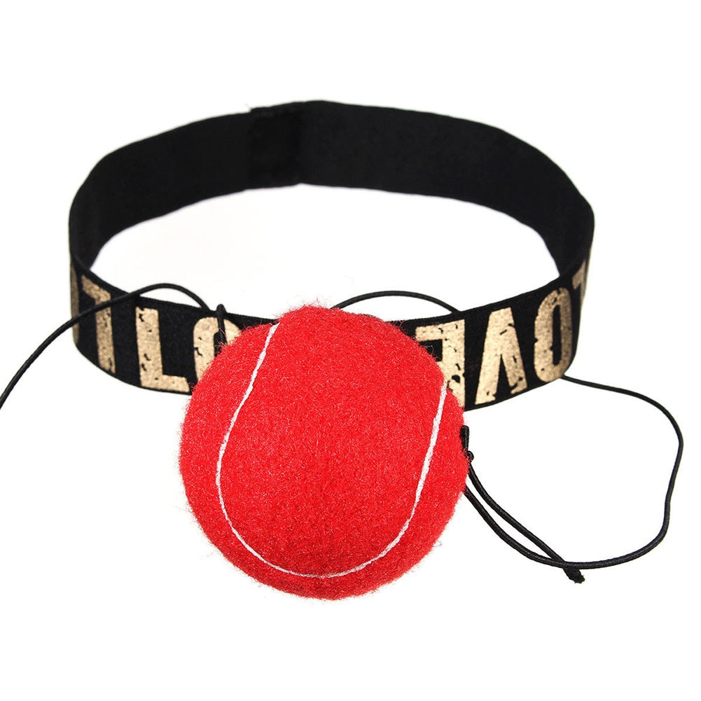 Boxing Punch Exercise Fight Ball