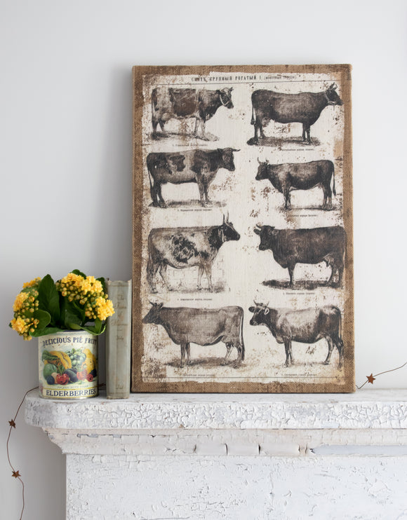Burlap Cow Picture