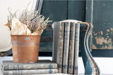 Distressed Antique Books