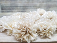 Load image into Gallery viewer, Carnations-3''