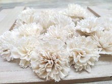 Load image into Gallery viewer, Carnations-1.5''