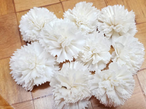 Carnations-1.5''