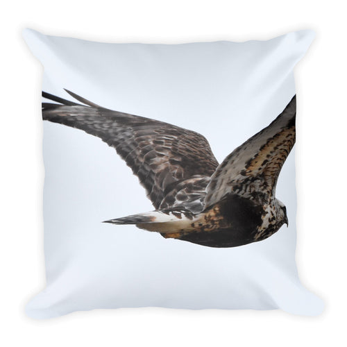 Rough-Tailed Hawk and Peregrine Falcon Pillow