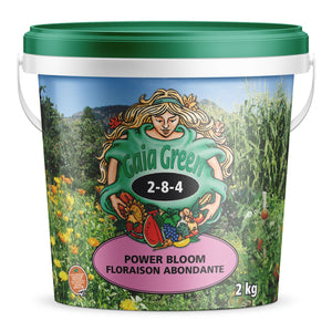 Gaia Green Power Bloom