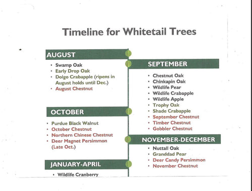 Whitetail Trees