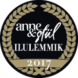 anne and stiili magazine beauty winner 2017