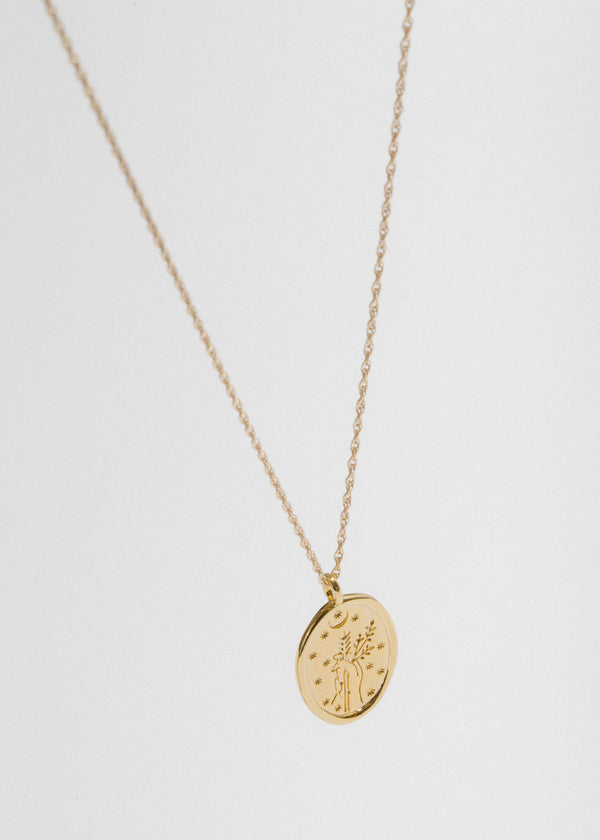 Diana Necklace in 14k Plated