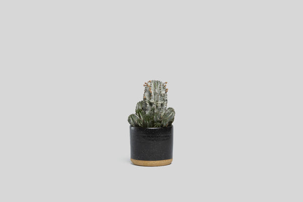 "5"" Planter (Black Speckle)"