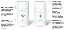 Wildflower CBD+ 500mg Healing Stick at CBDandyou.org