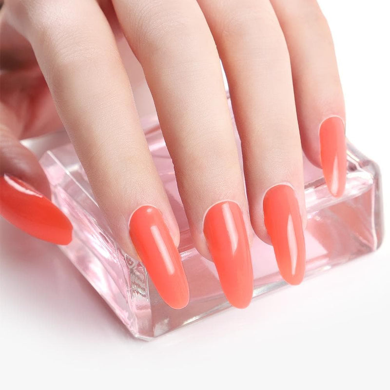 3pc Poly Gel Set