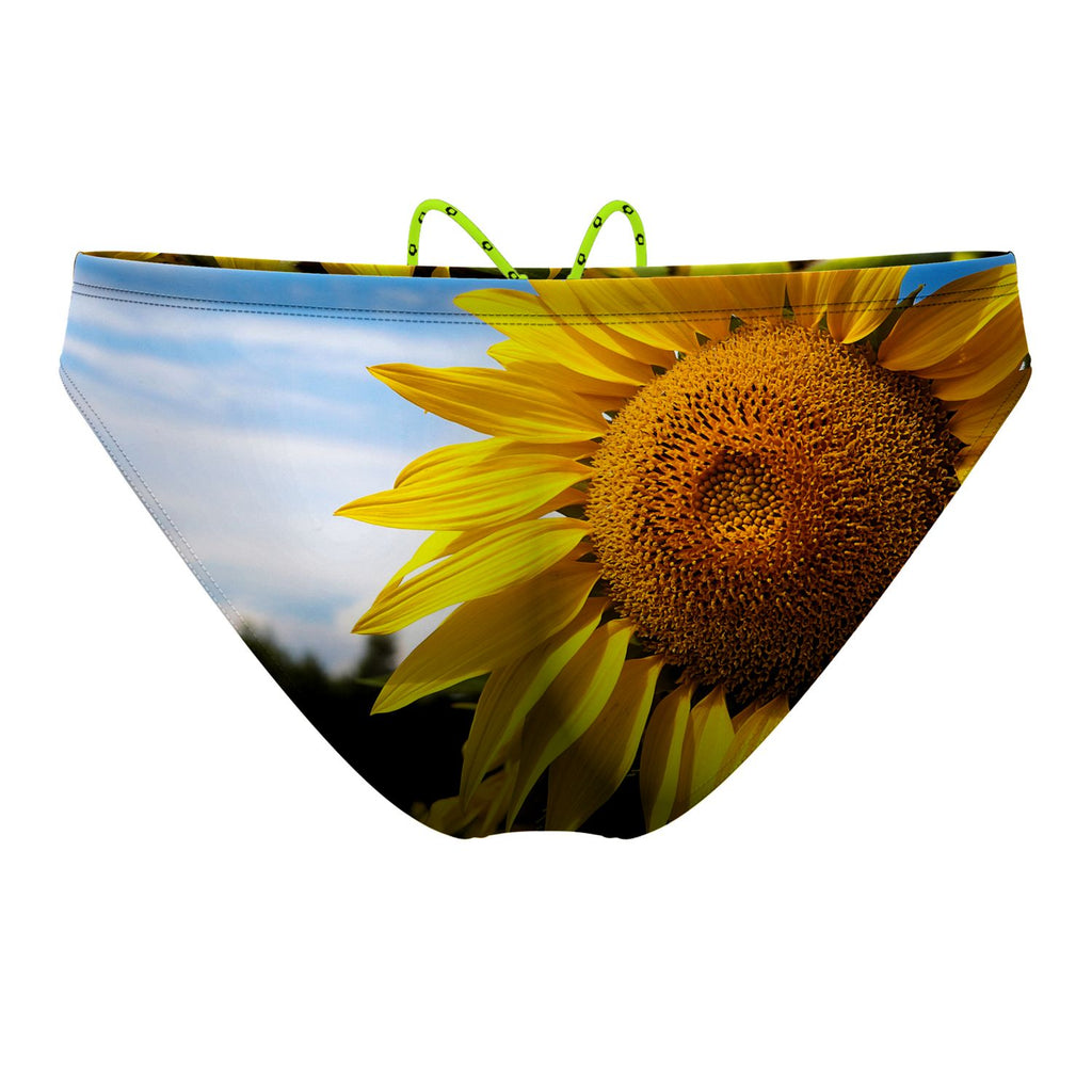 Sunflower Waterpolo Brief