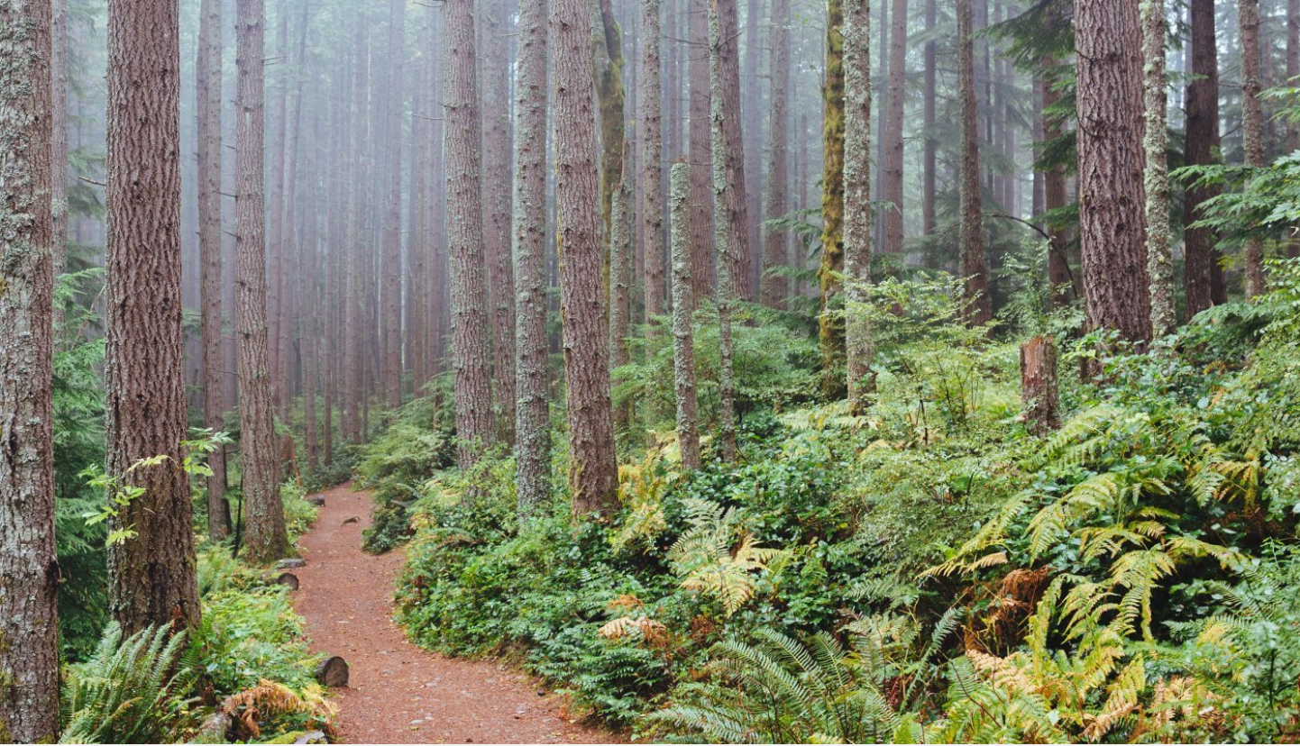 These Are the Most Secluded Hikes in the U.S.