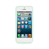 iPhone 5 and iPhone 5s  Mint Green Bumper Frosted Case