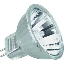 12 Volt Dichroic Halogen Bulb MR16 Base ( 2 Sizes Available )