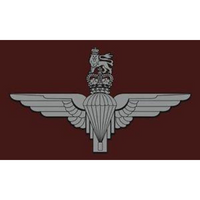 Parachute Regiment Flag - Bespoke Emerald Embroidery Ltd