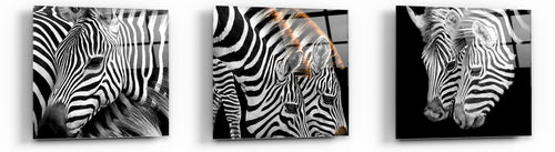 Cortesi Home Zebra Stripes Tempered Glass Wall Art, 12