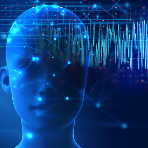 Animation of brain function while listening to music