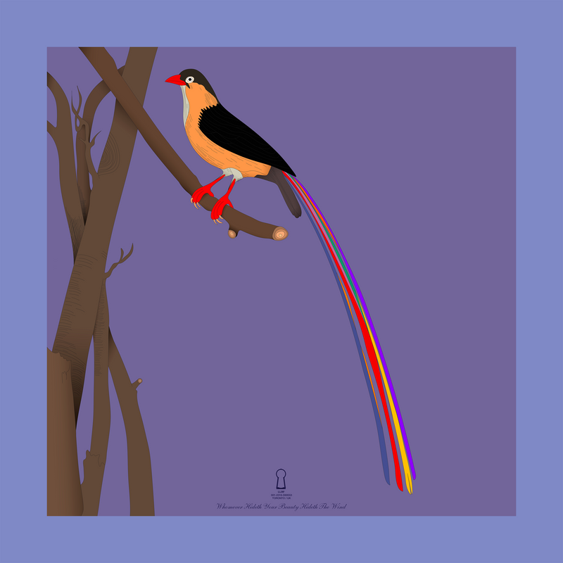 Bird with a long tail