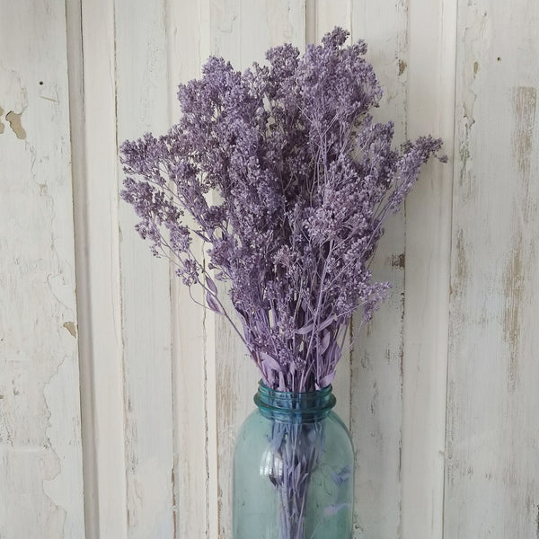 Sesame Bloom - Lilac - Preserved and Colored- 4oz - sola wood flowers wholesale