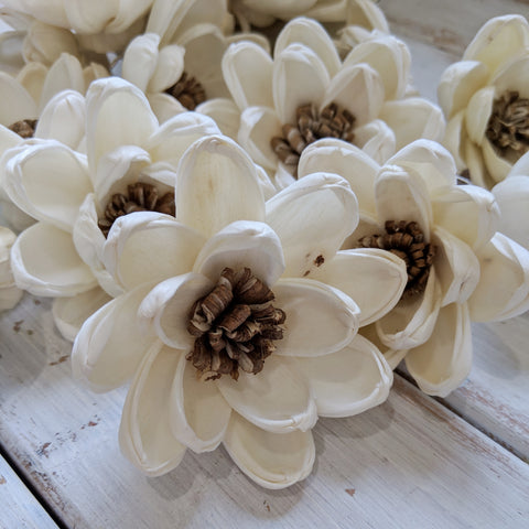 Spellbound - Multiple Sizes - sola wood flowers wholesale