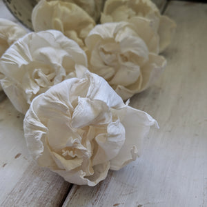 Peony Bud - 2.5 inch- sets of 12 - sola wood flowers wholesale