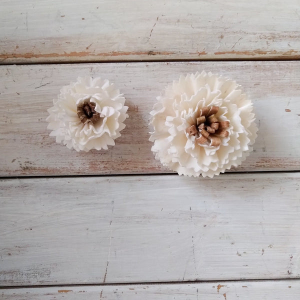 Latte - set of 12-  Multiple sizes - sola wood flowers wholesale
