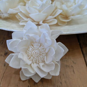 Queen Freya- set of 12-  2.5 inches - sola wood flowers wholesale