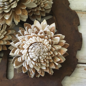 Cocoa- Set of 12 - multiple sizes - sola wood flowers wholesale