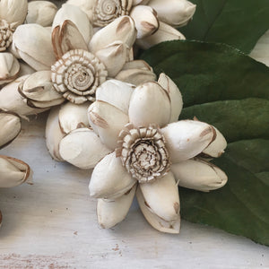 Lucy Flower- 2.5 inches - sold by the dozen - sola wood flowers wholesale