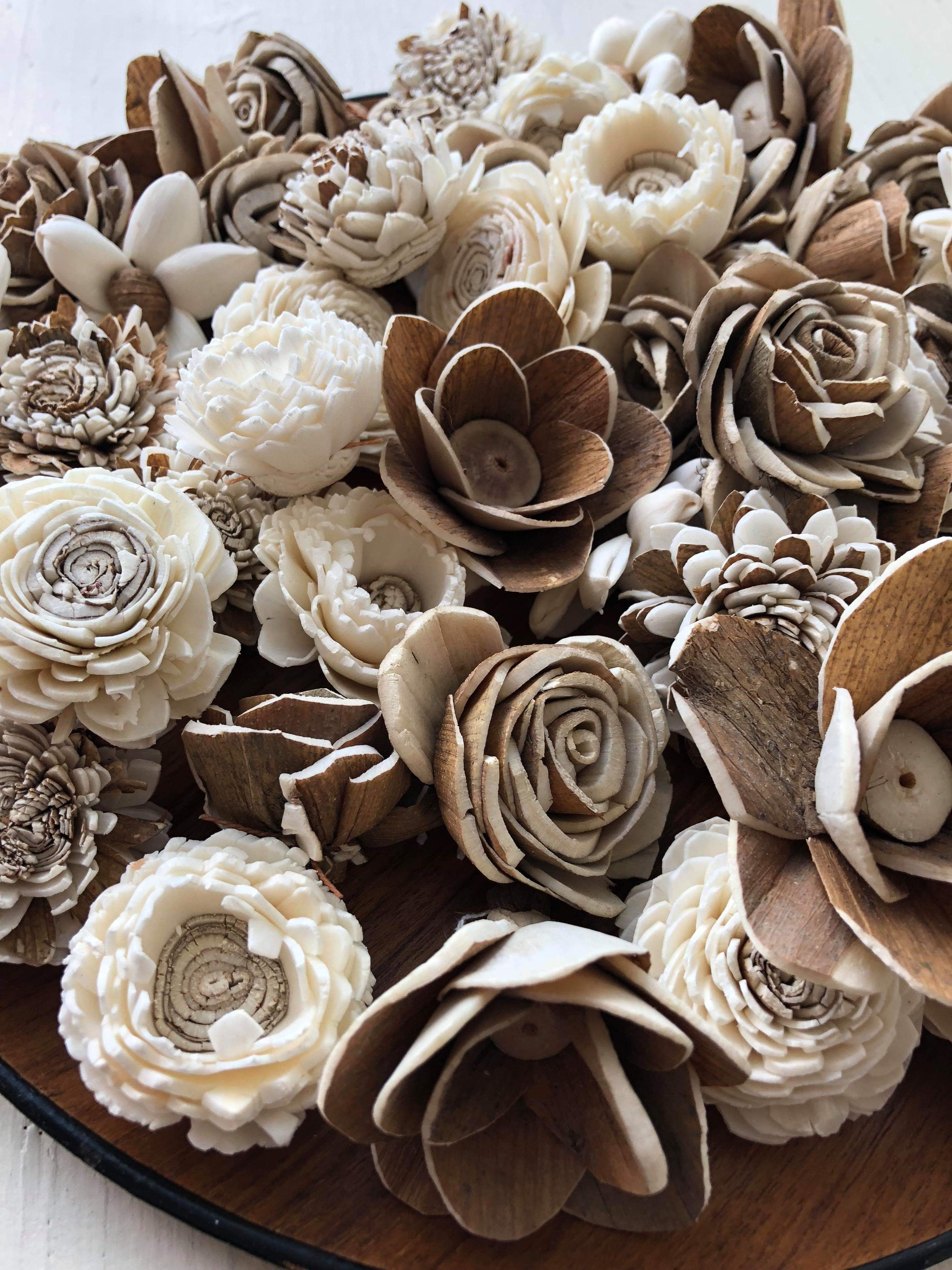 Barkie Smalls Assortment - set of 50 - sola wood flowers wholesale