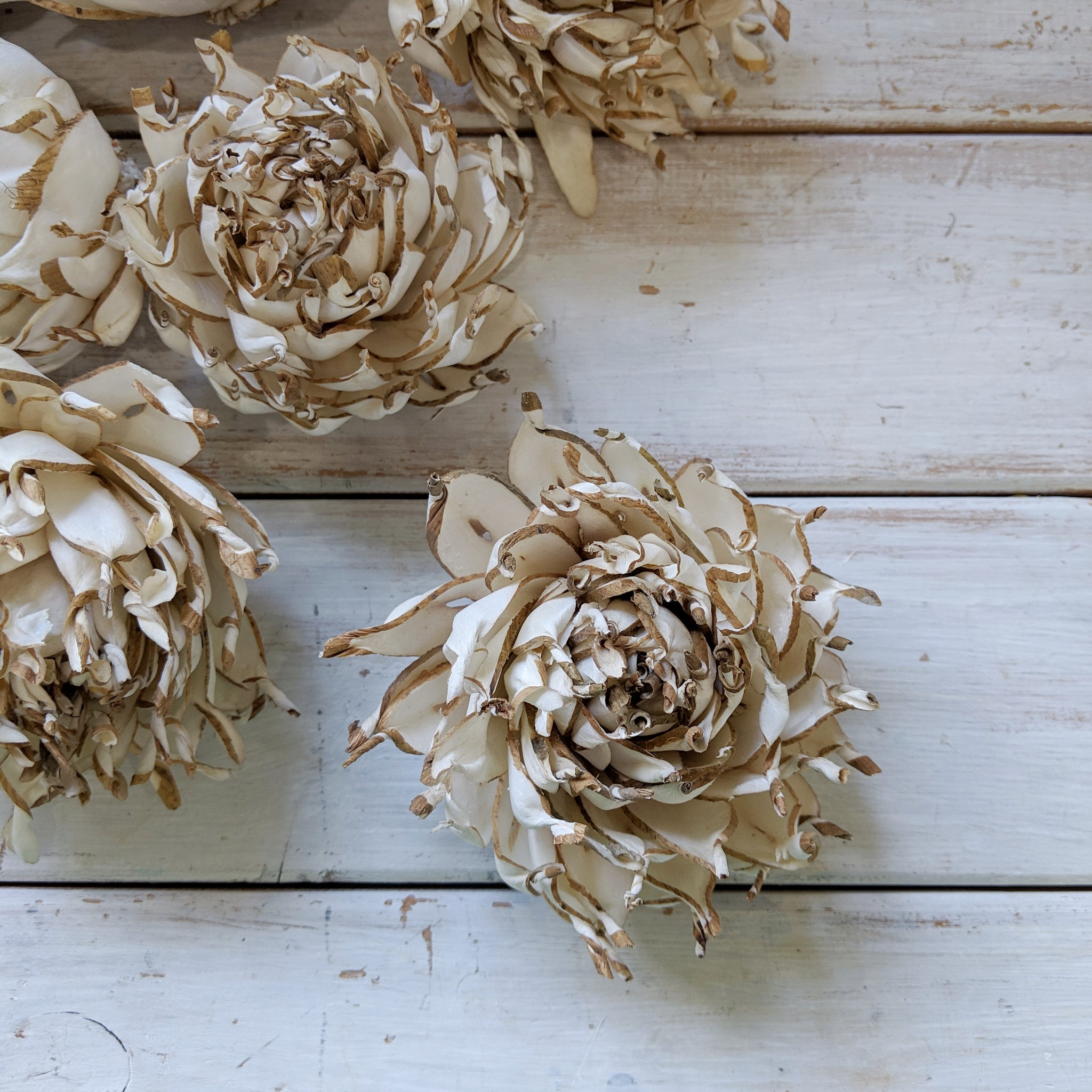Artichoke - 3 inches - sola wood flowers wholesale