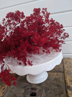 Sesame Bloom - Red - Preserved and Colored- 4oz - sola wood flowers wholesale