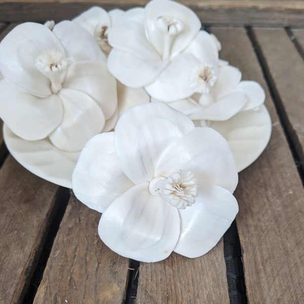 Hibiscus - set of 12 - 2.5 inches - sola wood flowers wholesale