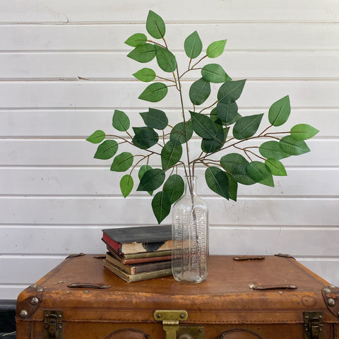 Artificial Ficus _sola_wood_flowers