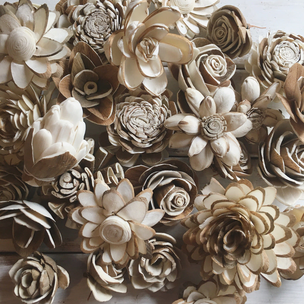 Skin Sola Flower Assortment - set of 50 - sola wood flowers wholesale