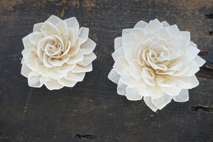 Miss Ivy  - set of 12 - multiple sizes available - - sola wood flowers wholesale