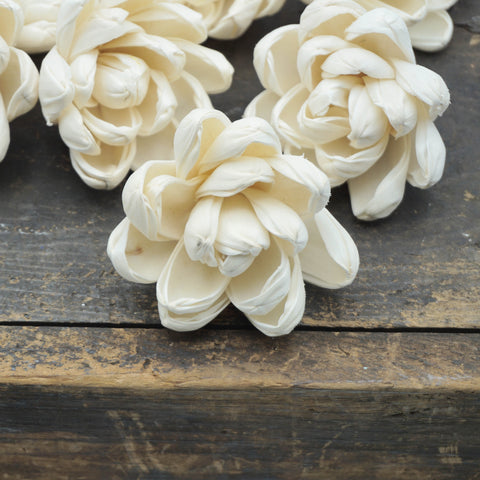 Blossom Flower  - set of 12- multiple sizes available - - sola wood flowers wholesale