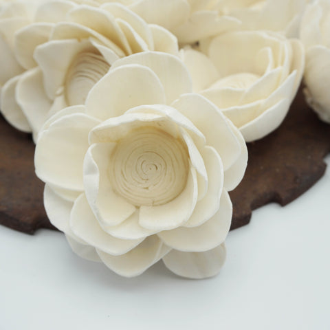Poppy - set of 12 - multiple sizes available - - sola wood flowers wholesale