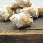 Sola Pinecones- Sold by the dozen - sola wood flowers wholesale