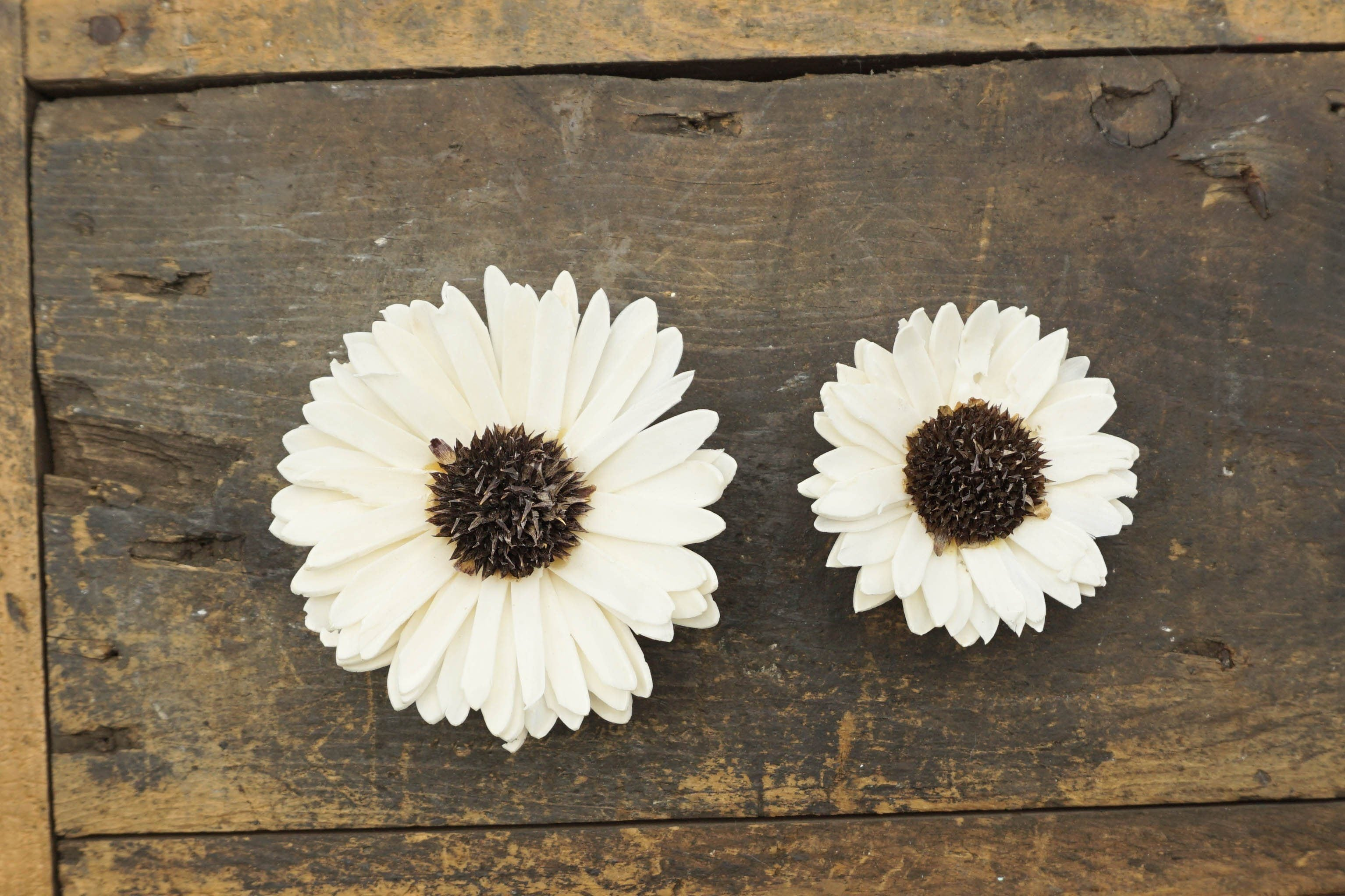 Sunflower - set of 12 - multiple sizes available - - sola wood flowers wholesale