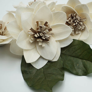 Twinkle - set of 12 - multiple sizes available - - sola wood flowers wholesale