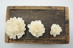 Waterlily - set of 12- multiple sizes available - - sola wood flowers wholesale