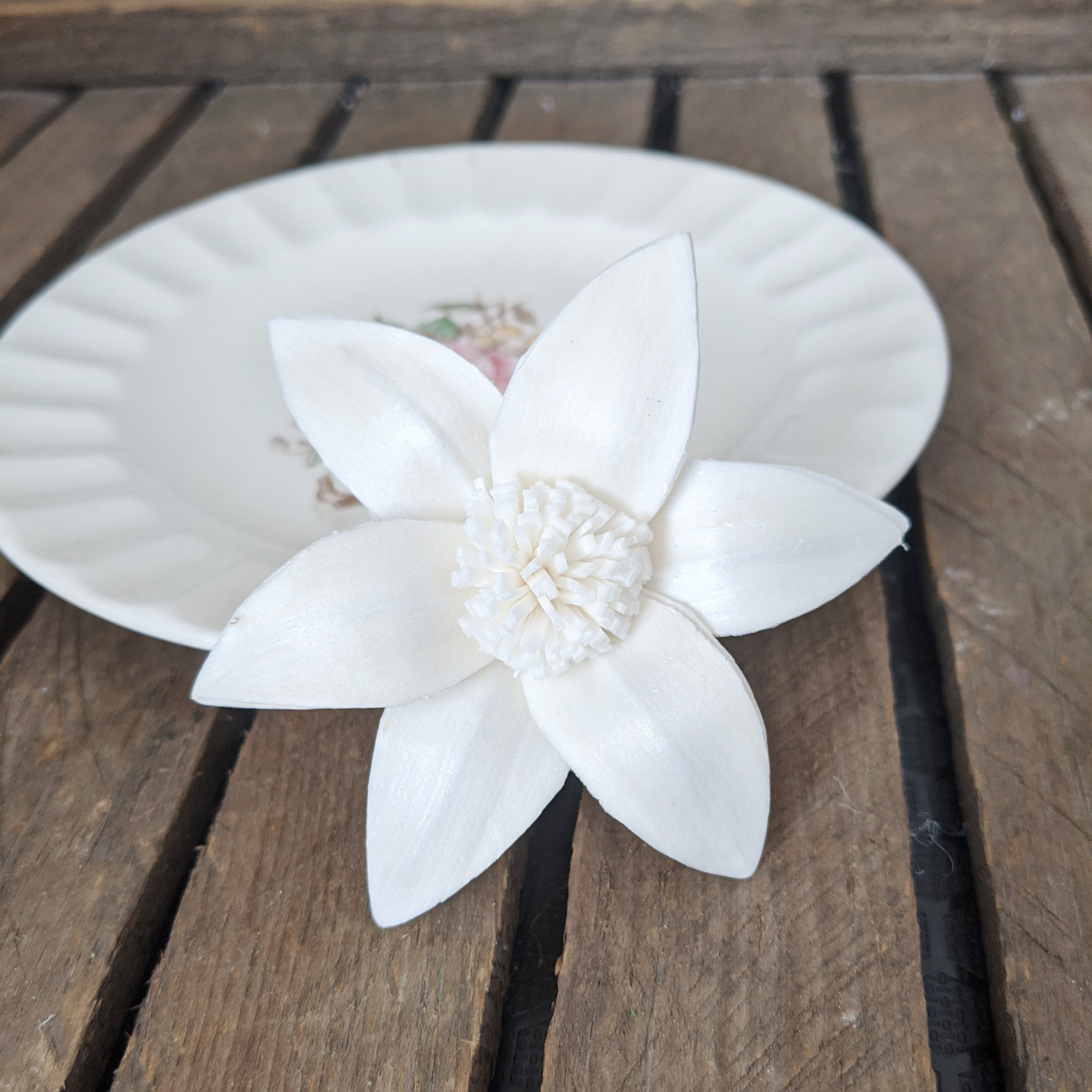 Star Lily - set of 12 - 2.5 inches - sola wood flowers wholesale