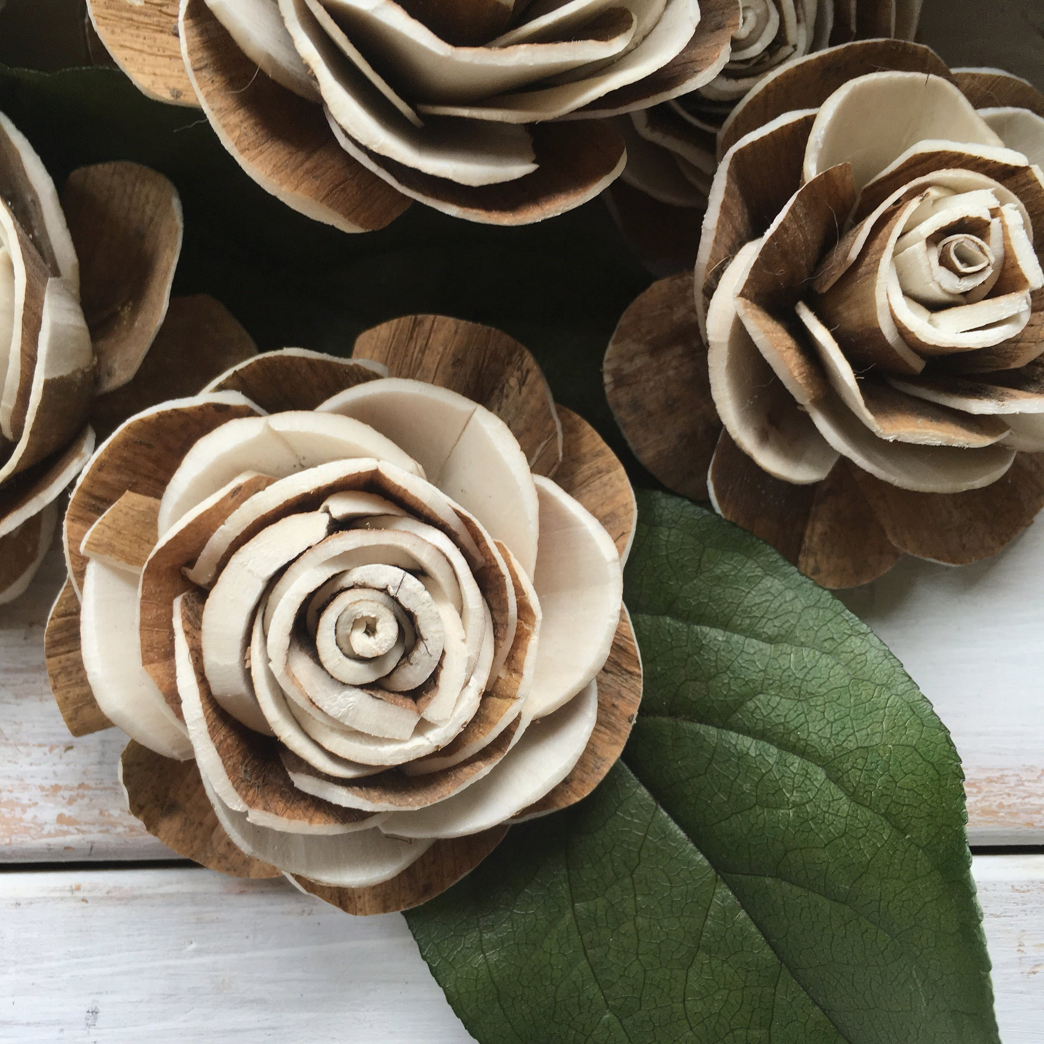Wood Rose-sold by the dozen- multiple sizes - sola wood flowers wholesale