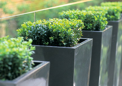 tapered planters | PureModern